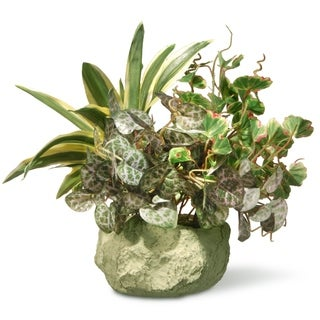 10-inch Potted Plant