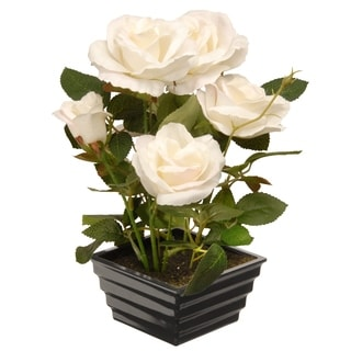 "11"" Potted White Rose Flowers"