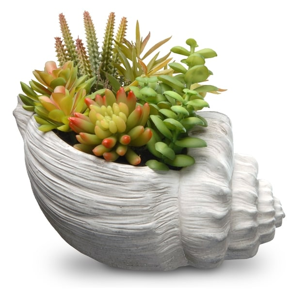 White Conch Shell Ceramic Pot 9.8-inch Artificial Succulent Plant