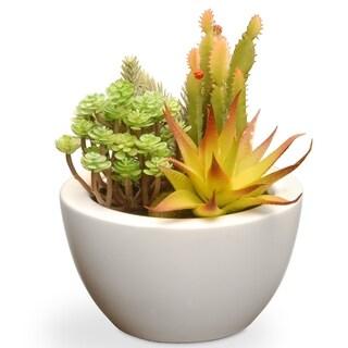 Multicolor 7.5-inch Artificial Succulent Plants in White Ceramic Pot
