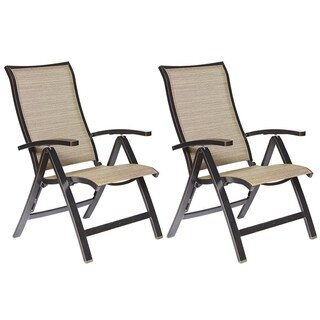 dali Folding Chairs with Arm, Patio Dining Chairs Cast Aluminum Outdoor Furniture 2 Pcs Set