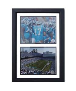 Carolina Panthers/ Bank of America Stadium Framed Photo