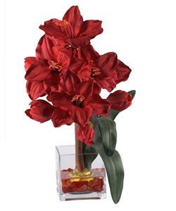 Amaryllis Liquid Illusion Flower Arrangement - Thumbnail 0