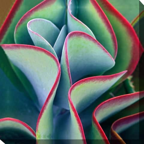 Red Tipped Leaves. Indoor/Outdoor Art - Multi-color