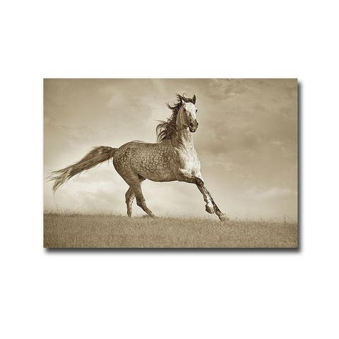 Like the Wind by Lisa Dearing Gallery Wrapped Canvas Giclee Art (24 in x 36 in, Ready to Hang)