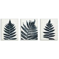 The Stupell Home Decor Bold Fern Pressing Prints Wall Plaque Art, 3pc, each 10 x 15, Proudly Made in USA - 3pc, each 10 x 15