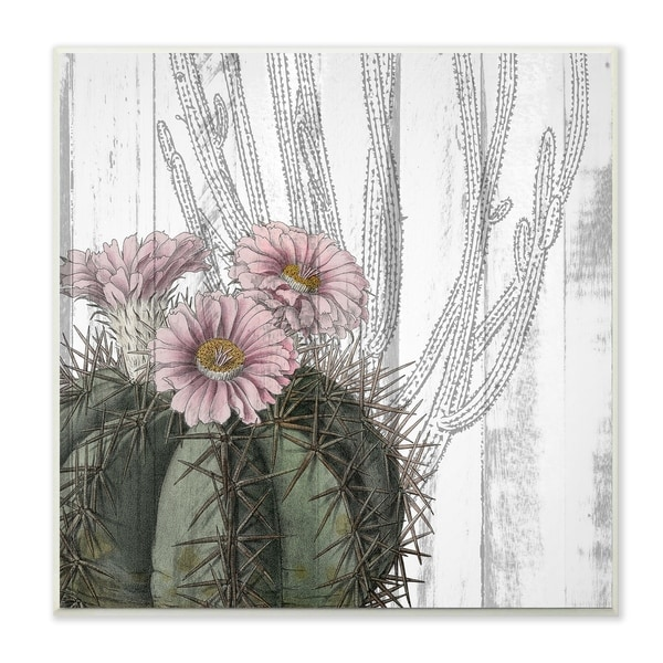 The Stupell Home Decor Cactus with Pink Blooming and Soft Grey Background Wall Plaque Art, 12 x 12, Proudly Made in USA