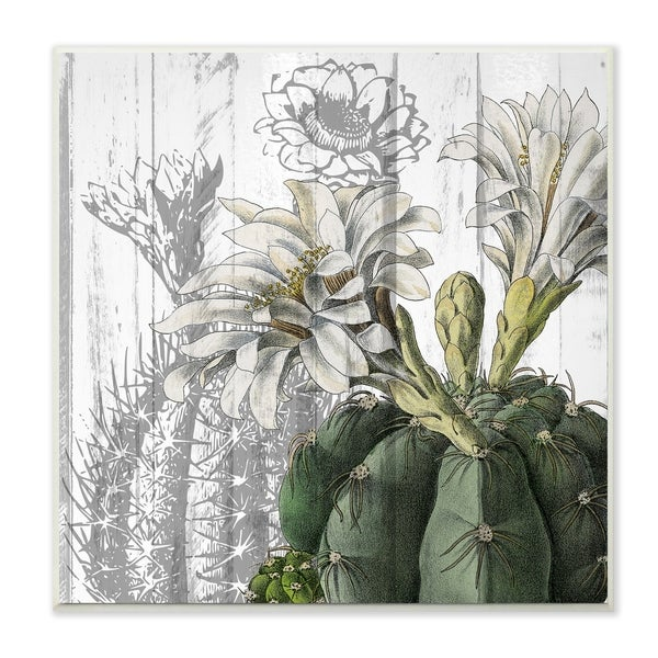 The Stupell Home Decor Cactus with White Blooming and Soft Grey Wall Plaque Art, 12 x 12, Proudly Made in USA - 12 x 12