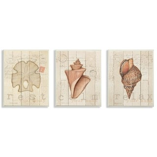The Stupell Home Decor Neutral Tan Sand Dollar and Shells  Wall Plaque Art, 3pc, each 10 x 15, Proudly Made in USA