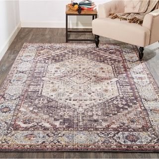 Grand Bazaar Matana Charcoal/Multi Transitional Medallion Area Rug
