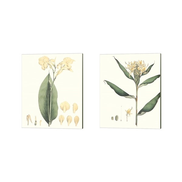 George Smith 'Soft Tropical B' Canvas Art (Set of 2)