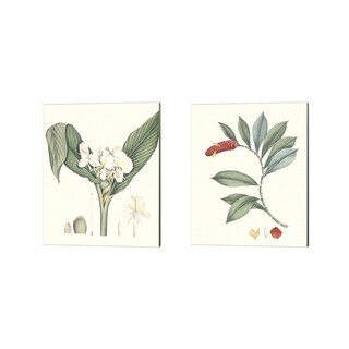 George Smith 'Soft Tropical D' Canvas Art (Set of 2)