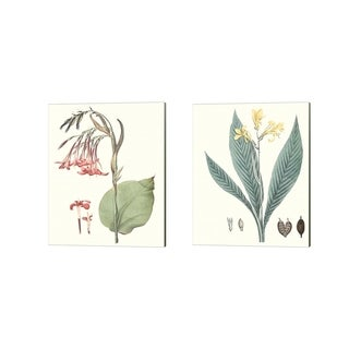 George Smith 'Soft Tropical A' Canvas Art (Set of 2)