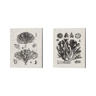 Vision Studio 'Coral Specimen A' Canvas Art (Set of 2)