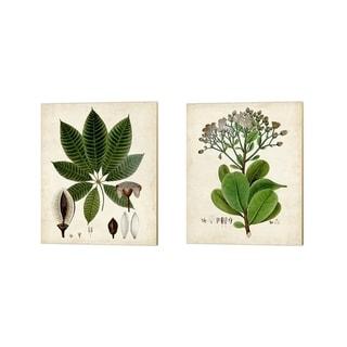 Vision Studio 'Verdant Foliage B' Canvas Art (Set of 2)