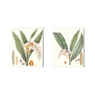 George Smith 'Soft Tropical C' Canvas Art (Set of 2)