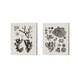 Vision Studio 'Coral Specimen C' Canvas Art (Set of 2)