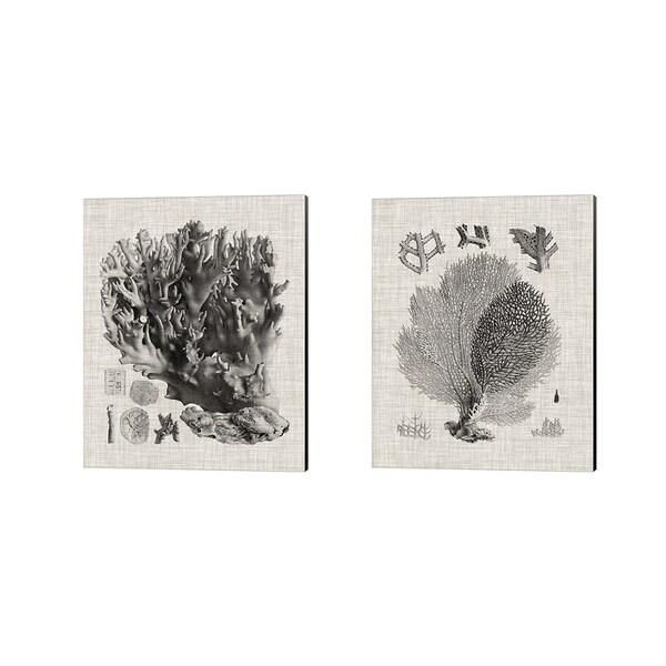 Vision Studio 'Coral Specimen B' Canvas Art (Set of 2)