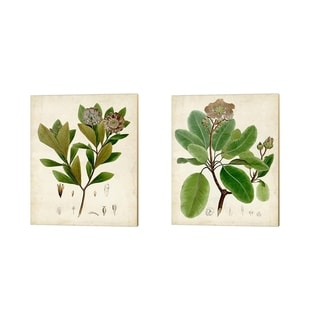 Vision Studio 'Verdant Foliage B' Canvas Art (Set of 2)