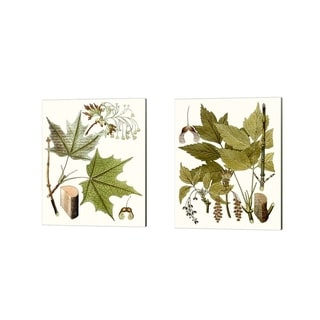 Unknown 'Maple Leaves B' Canvas Art (Set of 2)