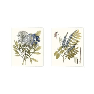 Unknown 'Lacy Leaves B' Canvas Art (Set of 2)
