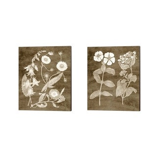 Vision Studio 'Botanical in Taupe' Canvas Art (Set of 2)