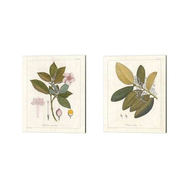 Wild Apple Portfolio 'Botanical Gardenia & Heritiera v2' Canvas Art (Set of 2)