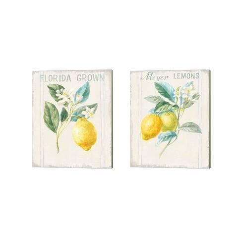 Danhui Nai 'Floursack Lemon v2' Canvas Art (Set of 2)