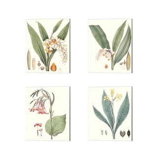 George Smith 'Soft Tropical A' Canvas Art (Set of 4)