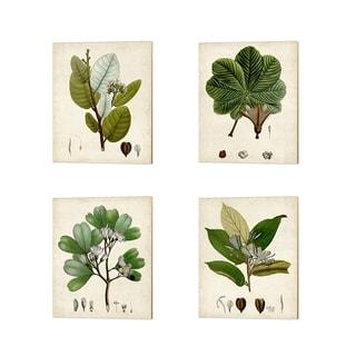 Vision Studio 'Verdant Foliage A' Canvas Art (Set of 4)