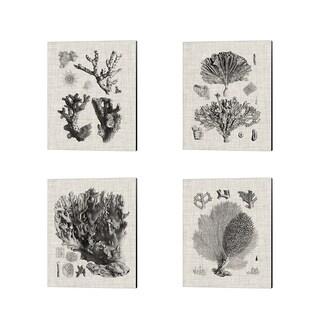 Vision Studio 'Coral Specimen B' Canvas Art (Set of 4)