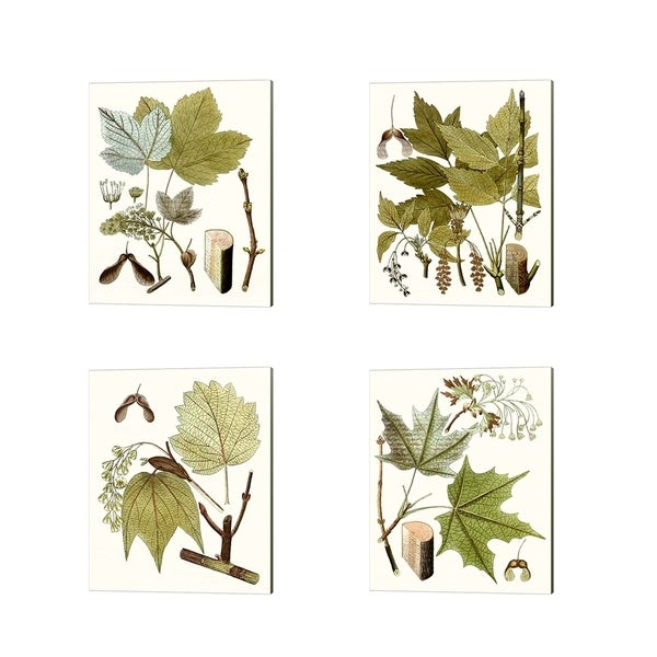 Unknown 'Maple Leaves' Canvas Art (Set of 4)
