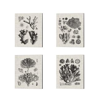 Vision Studio 'Coral Specimen A' Canvas Art (Set of 4)