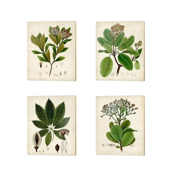 Vision Studio 'Verdant Foliage B' Canvas Art (Set of 4)