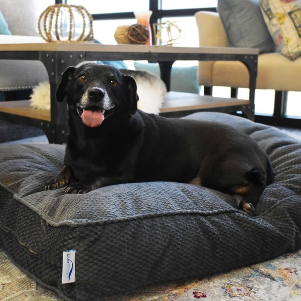 Kotter Home LiveSmart Orthopedic Indoor/Outdoor Dog Bed. Opens flyout.
