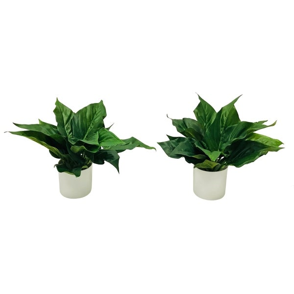 Modern tropical cally lily foliage pair