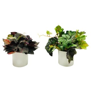 Modern mixed foliage pair