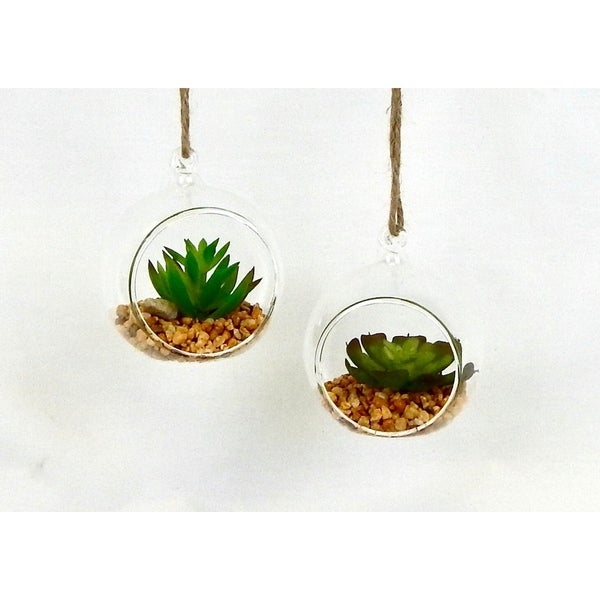 Shop Set Of 2 Hanging Succulent Terrarium Free Shipping On Orders
