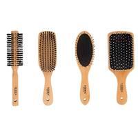 Terra Professional Wooden Brush Set, Multi (Pack of 4)