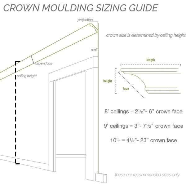 2H x 2 1//4P x 3 1//8F x 94 1//2L Leandros Rope Crown Moulding