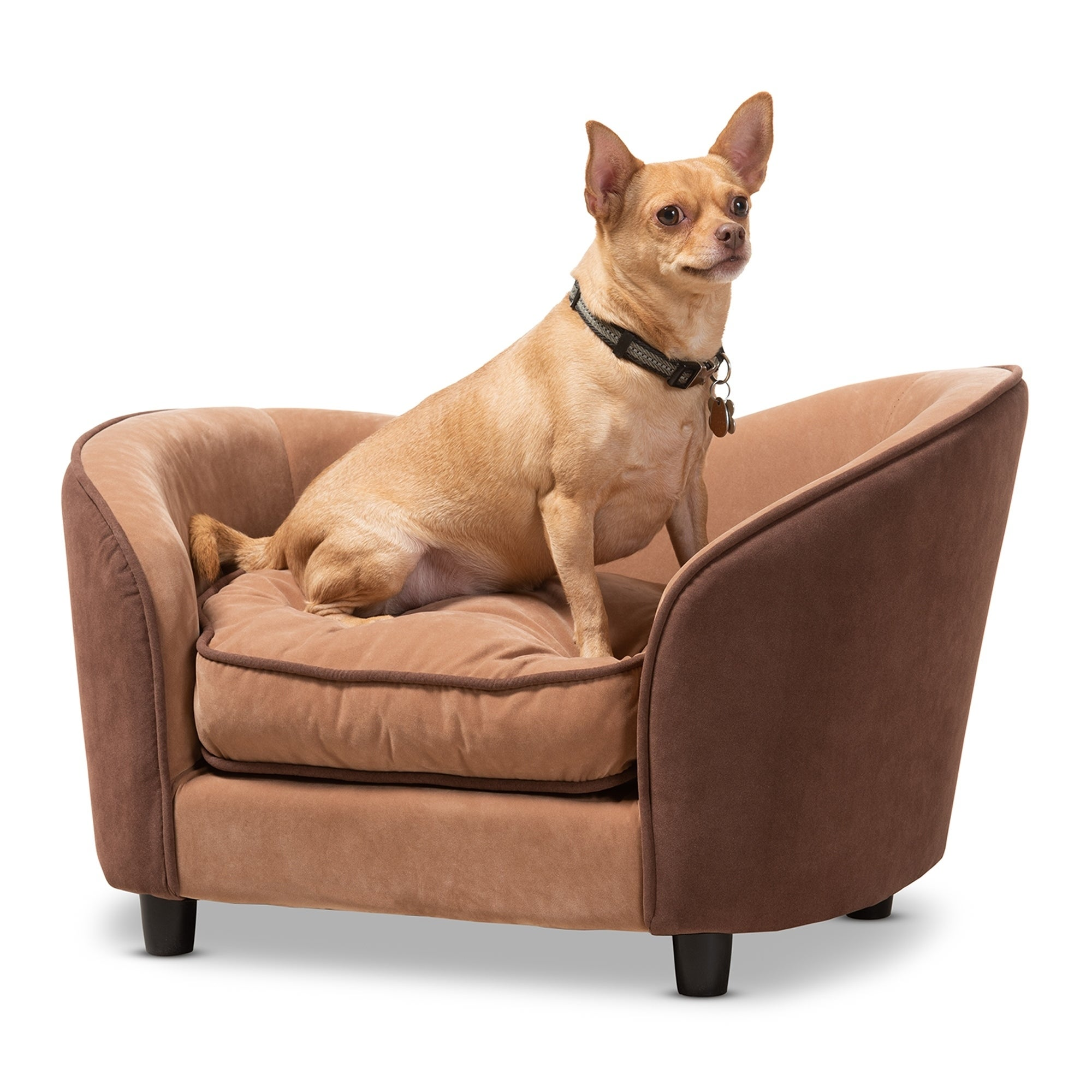 Modern And Contemporary Two Tone Pet Sofa Bed