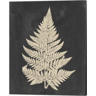 Vision Studio 'Linen Fern I' Canvas Art