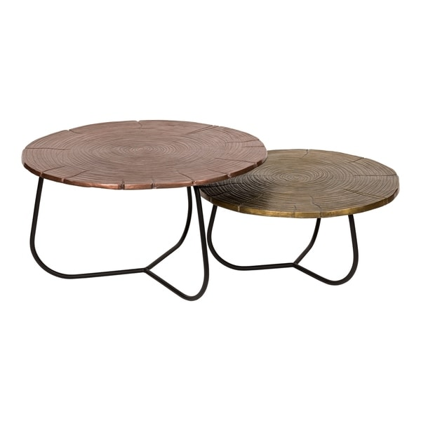 Aurelle Home Multi Contemporary Occasional Tables (Set of 2)