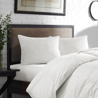 Moisture Wicking Down Alternative Pillow - Twin Pack - White