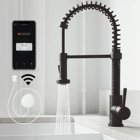 VIGO Edison Pull-Down Spray FloodSense Technology Kitchen Faucet