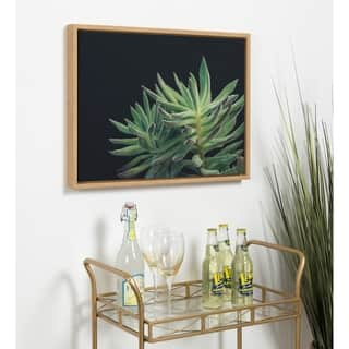 Kate and Laurel F2 Images Sylvie 'Succulent 13' Natural Framed Canvas
