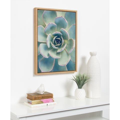 Kate and Laurel Sylvie Succulent 7 Framed Canvas by F2 Images