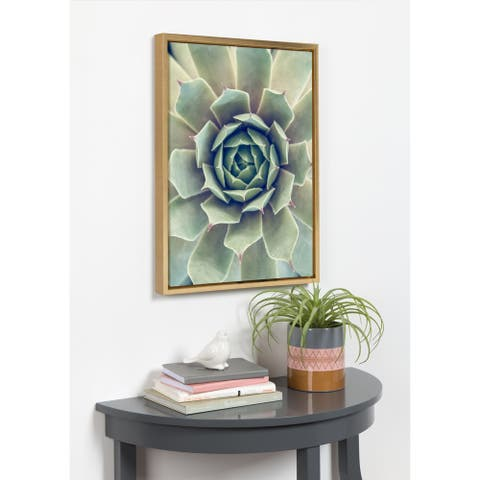 Kate and Laurel Sylvie Succulent 1 Framed Canvas by F2 Images