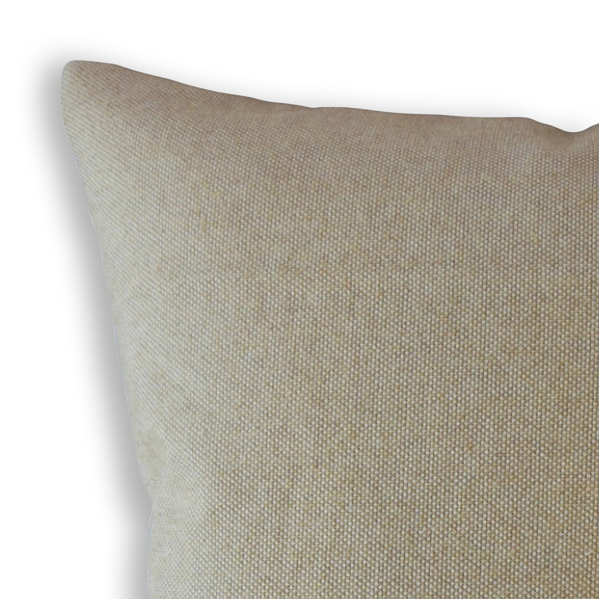 The Pillow Collection Nizar Solid Latte Down Filled Throw Pillow