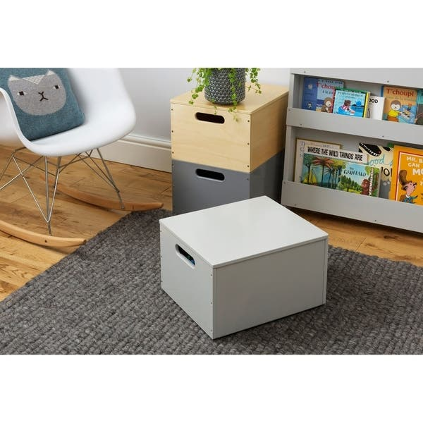 Marvelous Tidy Books Handmade Wooden Toy Storage Sorting Box With Lid Pale Grey Ncnpc Chair Design For Home Ncnpcorg